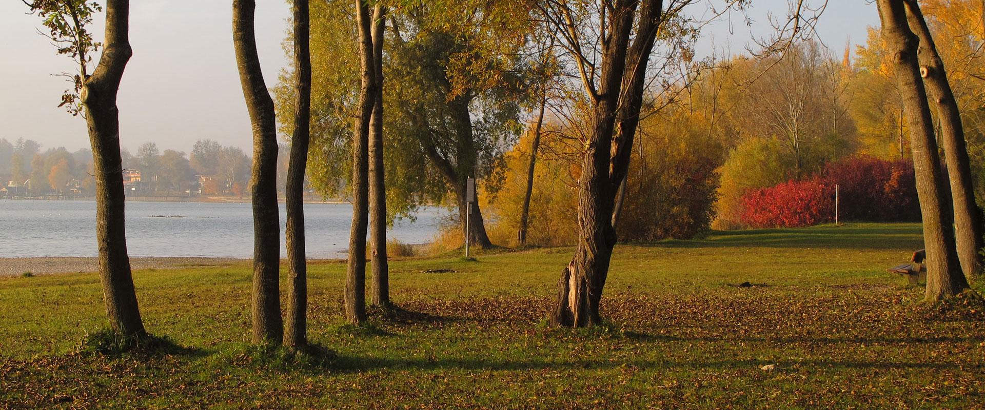 Herbst im Chiemgau und Chiemsee, Kurpark Seebruck