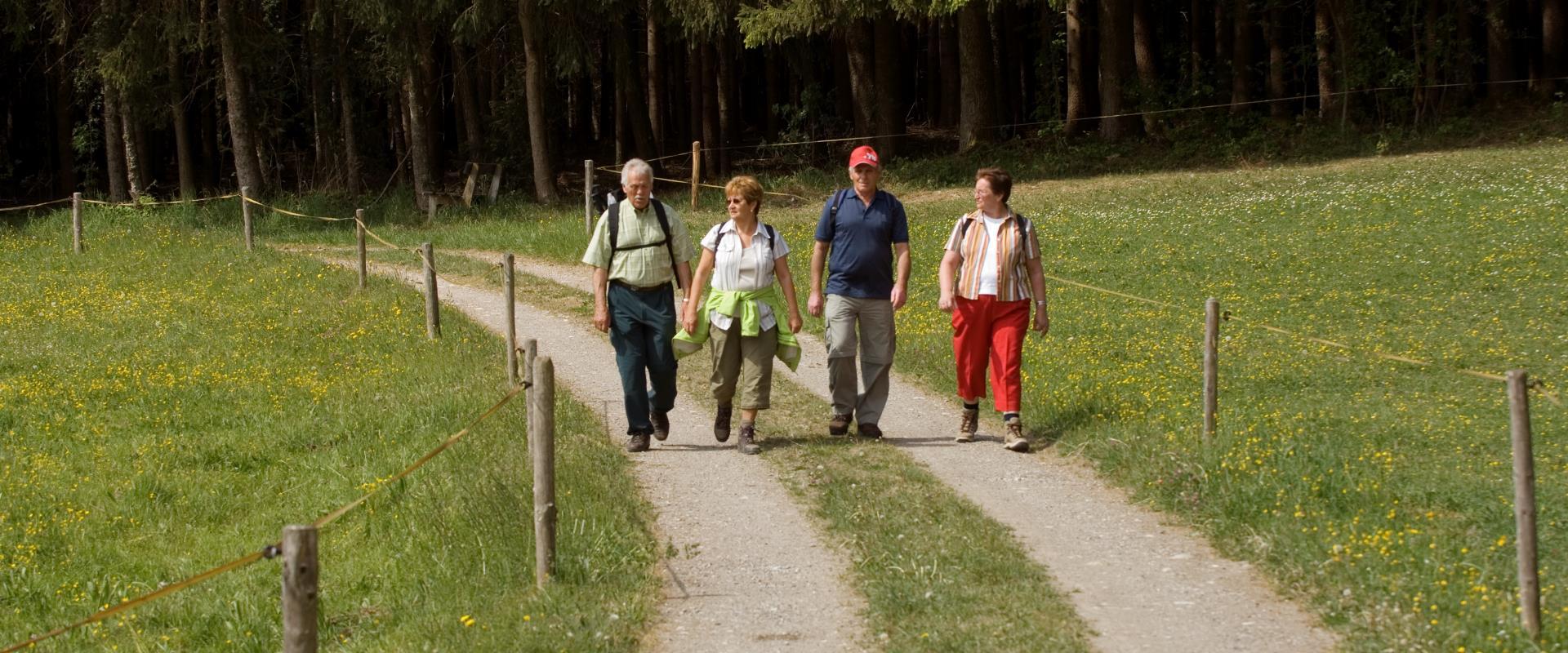 Wanderherbst in Seeon-Seebruck, © Tourist-Information Seebruck