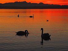 Herbst, Sonnenuntergang, Stimmung, Seebruck, © Tourist-Information Seebruck