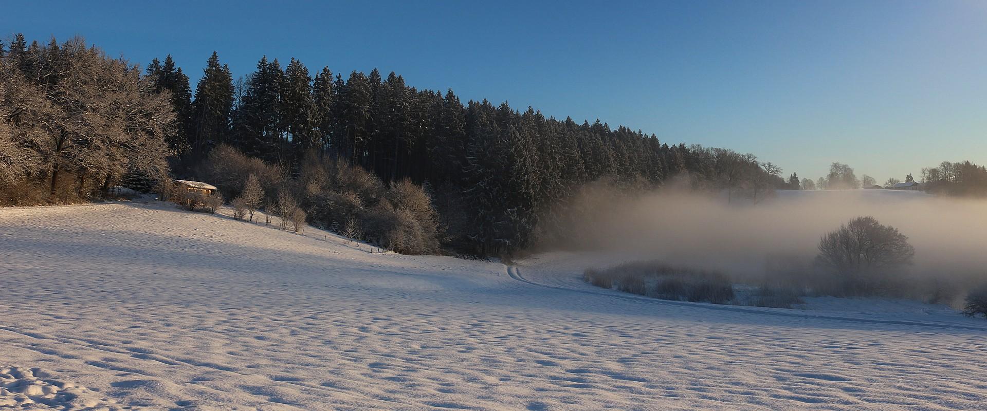 Winter an der Alz, © Christel Hacker